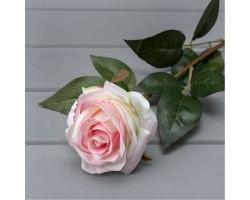 Роза бархатная 67 см