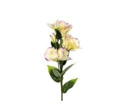 Эустома фиолетовая 72 см
